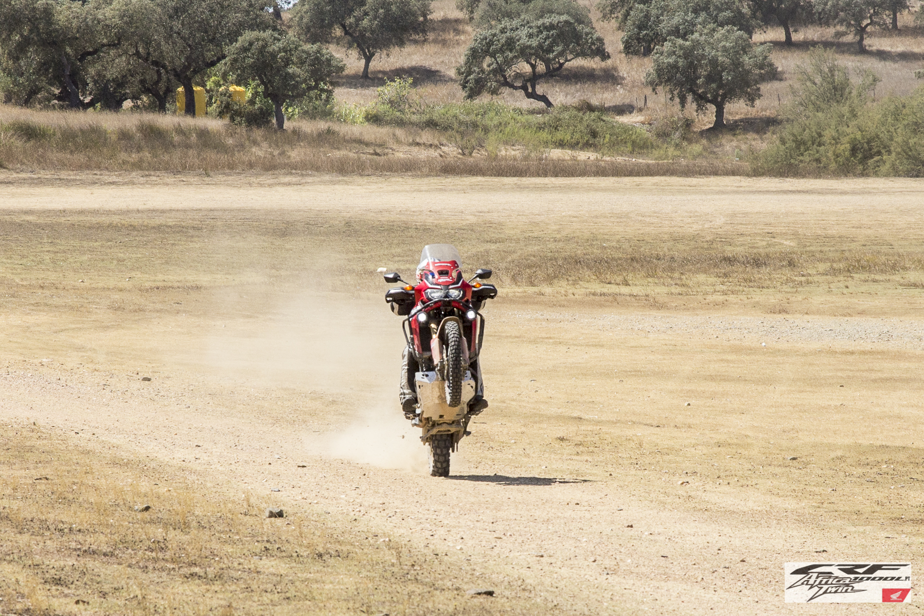 CRF1000L Africa Twin Wheelie
